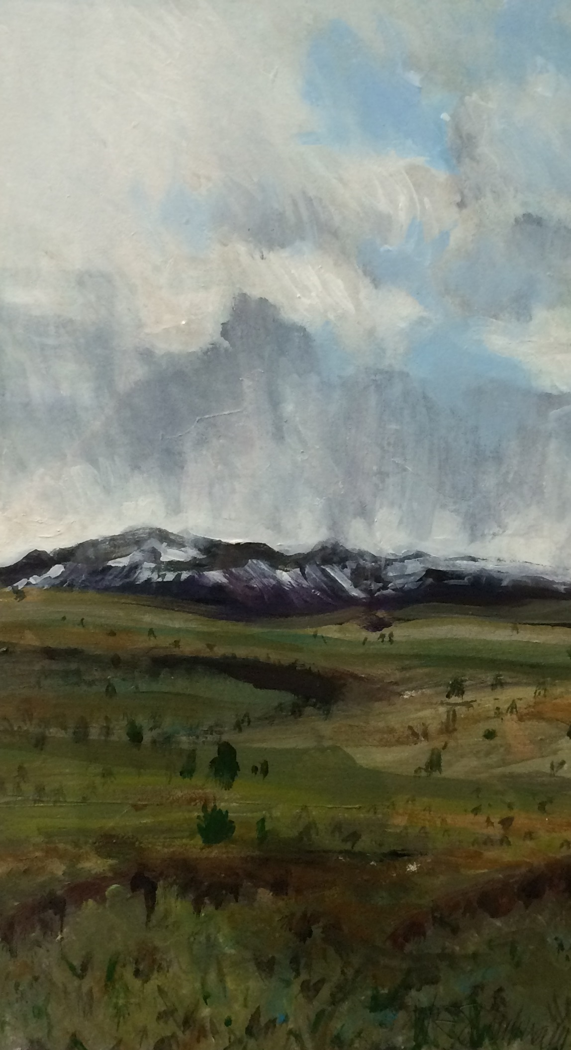 Steens Mountains Storm W.E.Shumway acrylic 8.5 X 15(h) inches 275.00.JPG