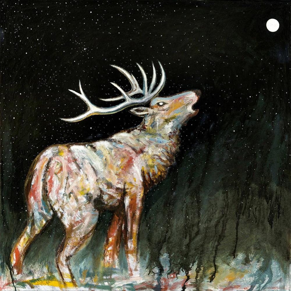 "Bull Elk Bugle  Oil on canvas  36"" x 36""   $850"