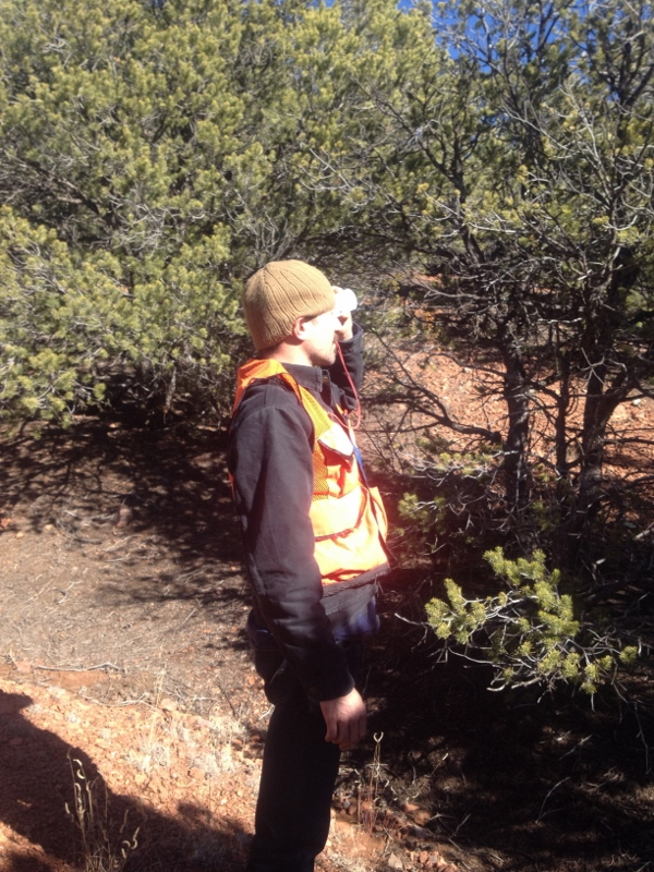 60,000 Acre Planning and Forest Inventory. Luera Mountain.jpg