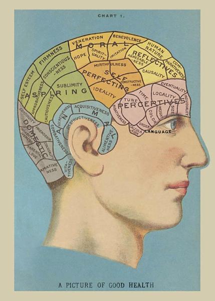 Vintage brain.jpg