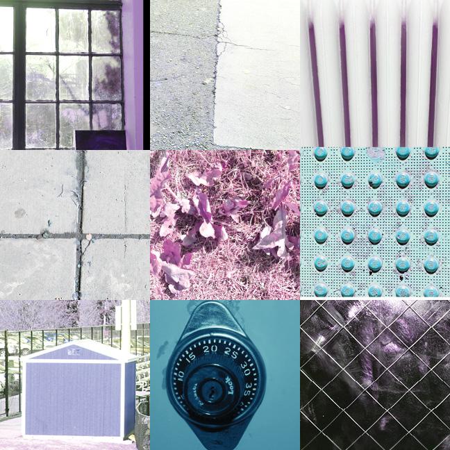 9x9_grid_photo1Kylah(1).jpg