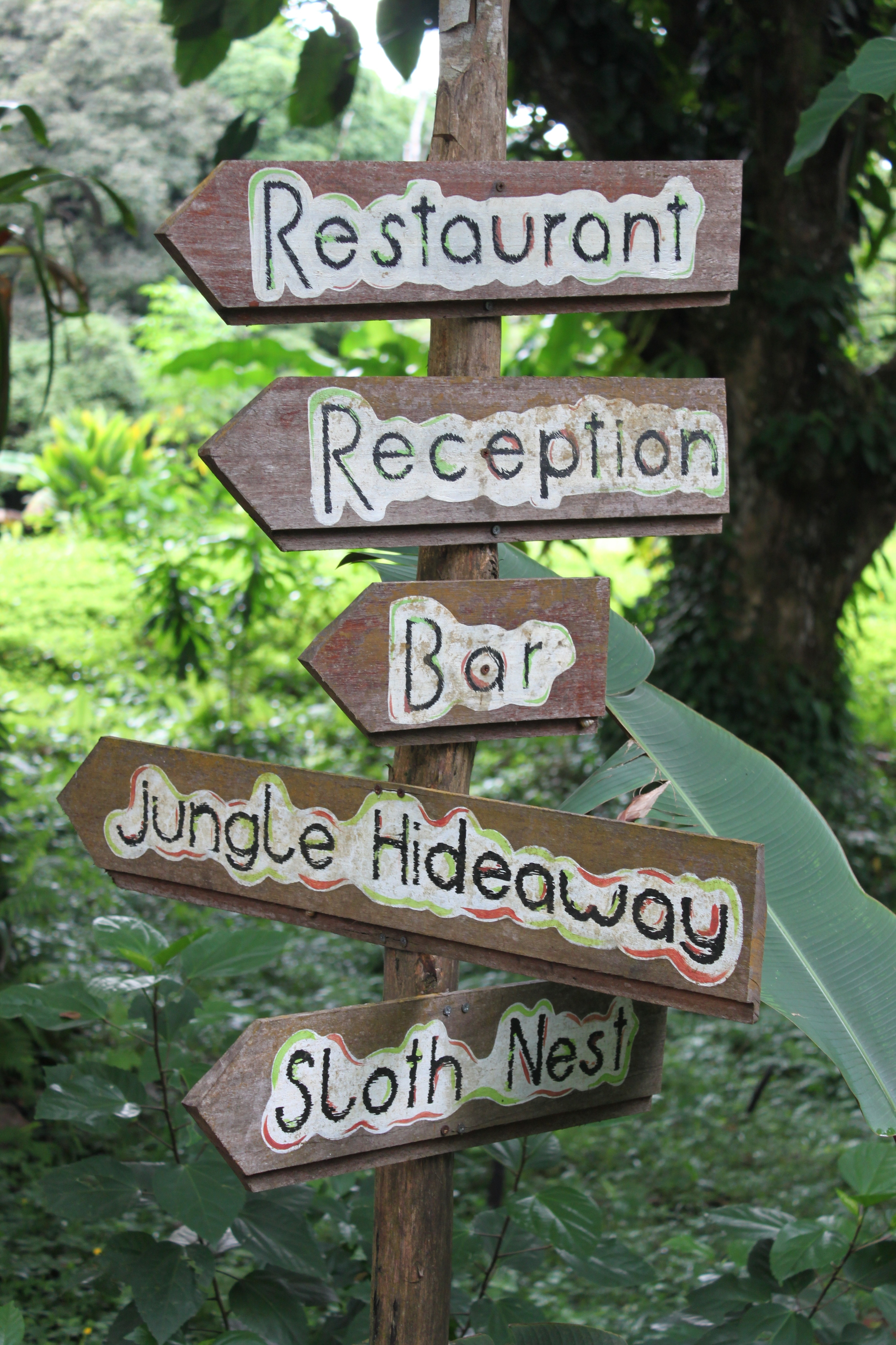 A hostel with a sloth nest?! Bambuda Lodge - Isla Solarte, Bocas Del Toro, Panama