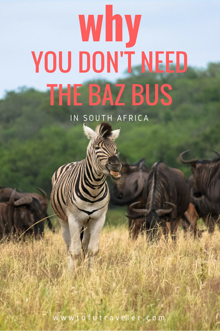 Why You Don't Need The Baz Bus In South Africa