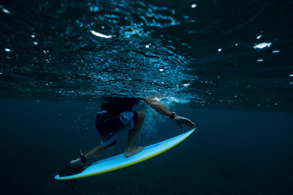 Tom Carroll_Shark Shield_Photo Ord-105.jpg