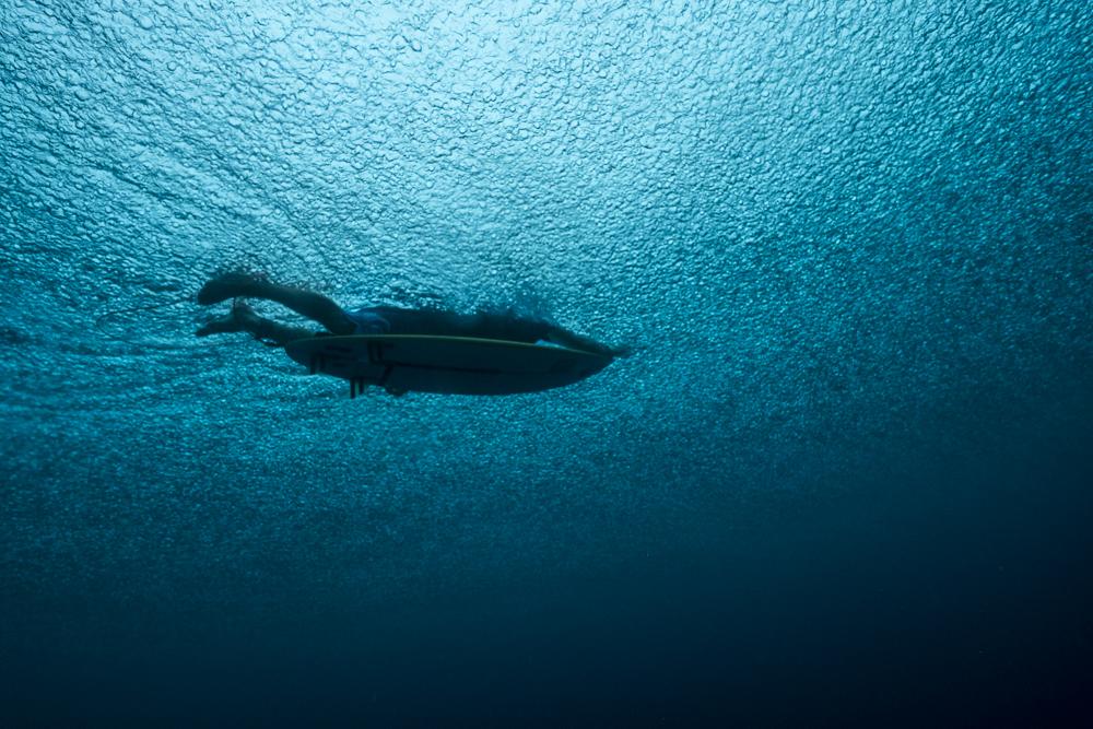 Tom Carroll_Shark Shield_Photo Ord-123.jpg