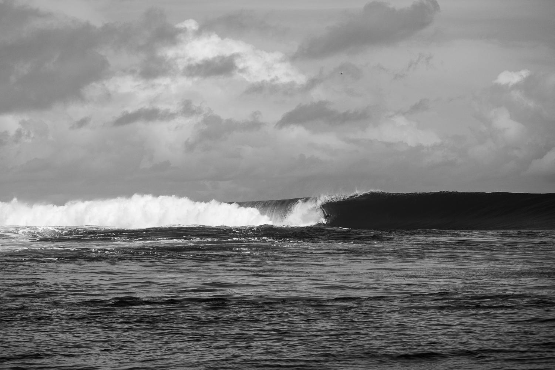 Chippa Wilson _Fiji_Photo Ord-586.jpg