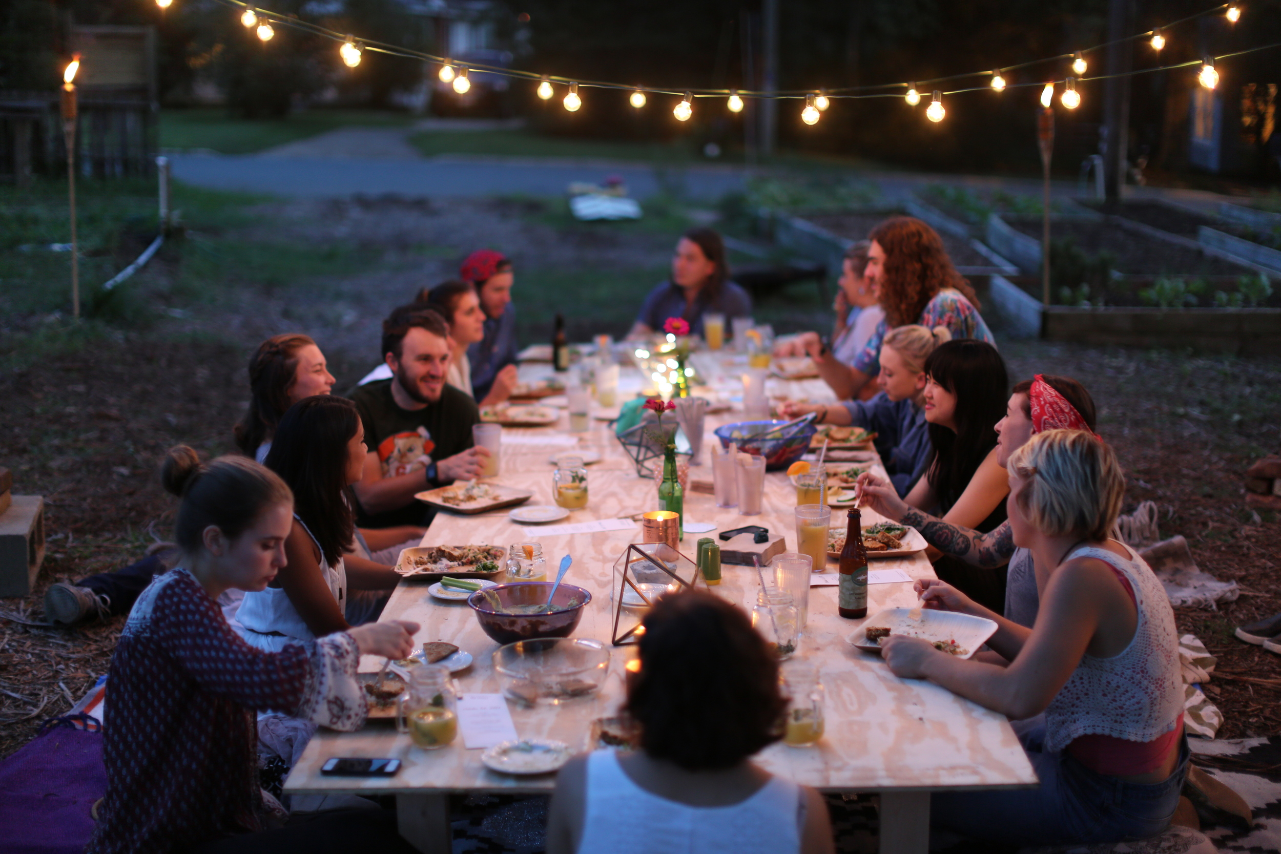Farm to table fancy picnic dinner