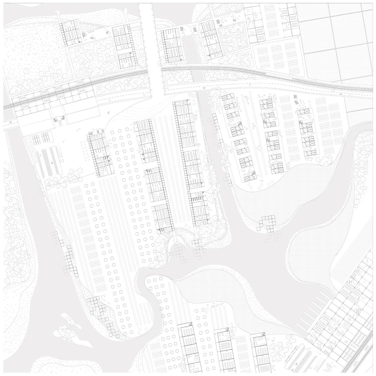 Site Nine: Plan