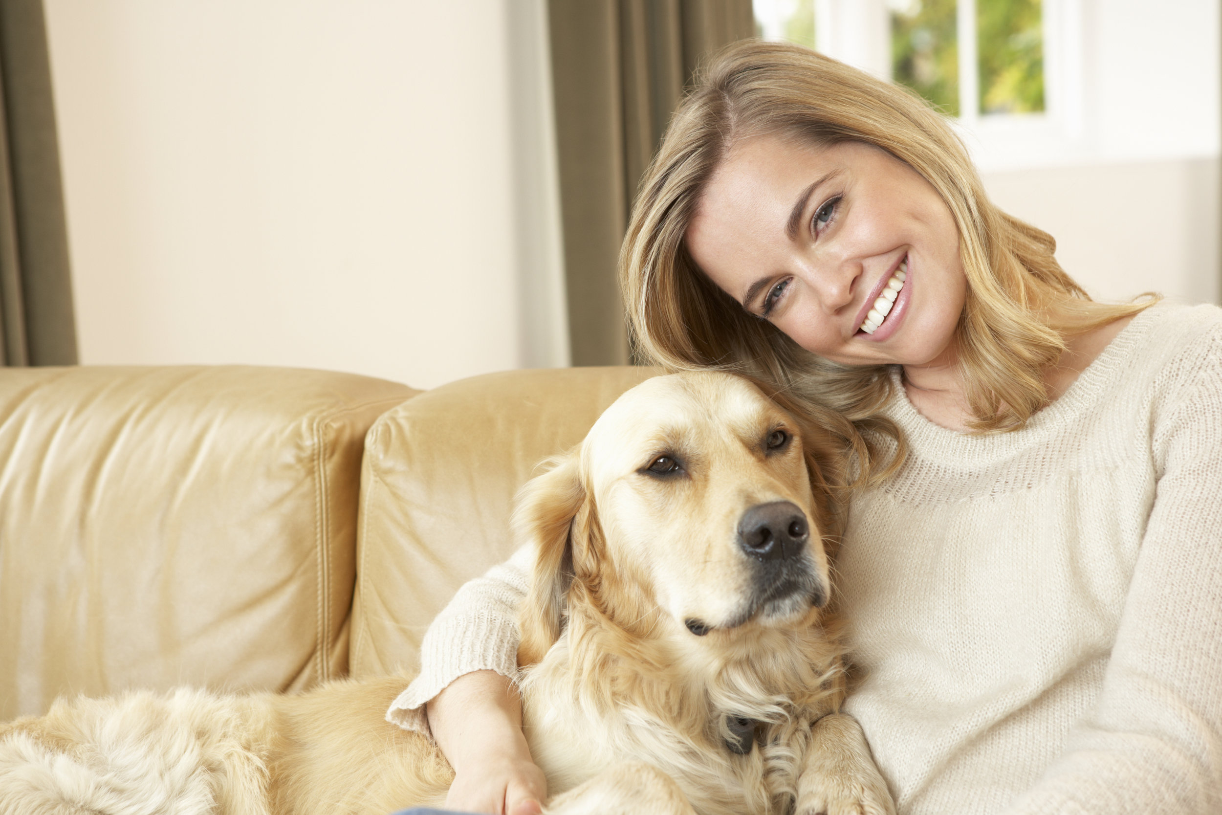 Find A Pet Sitter - In San Antonio