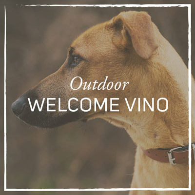 outdoor-welcome-vino.jpg