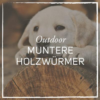 Galerie_Outdoor_Holzwuermer.jpg