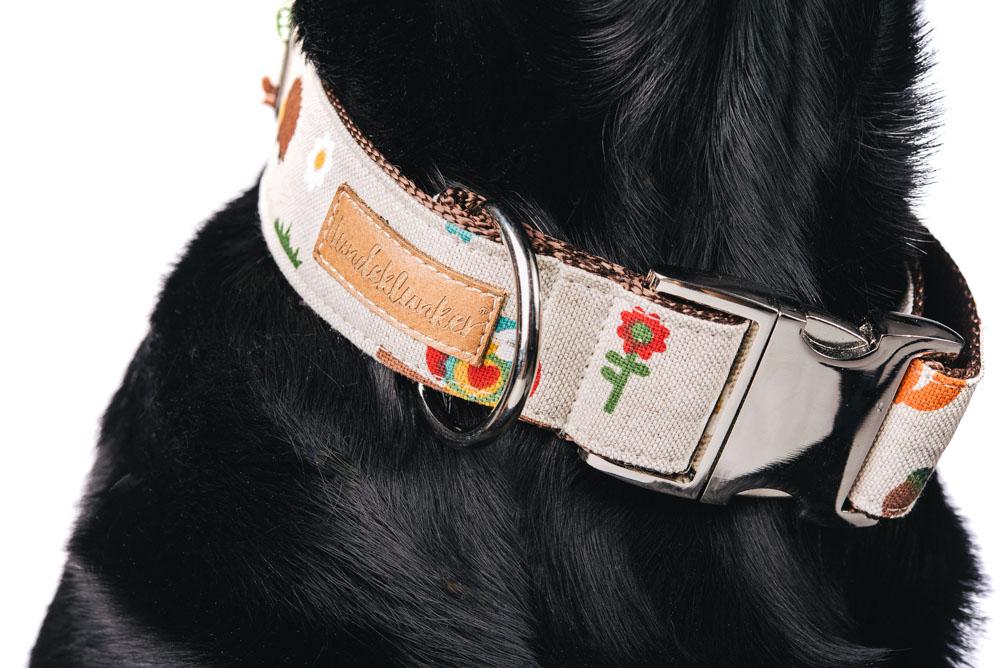 """""""Fuchs und Hase"""" von Hundeklunker in der Nahaufnahme"""