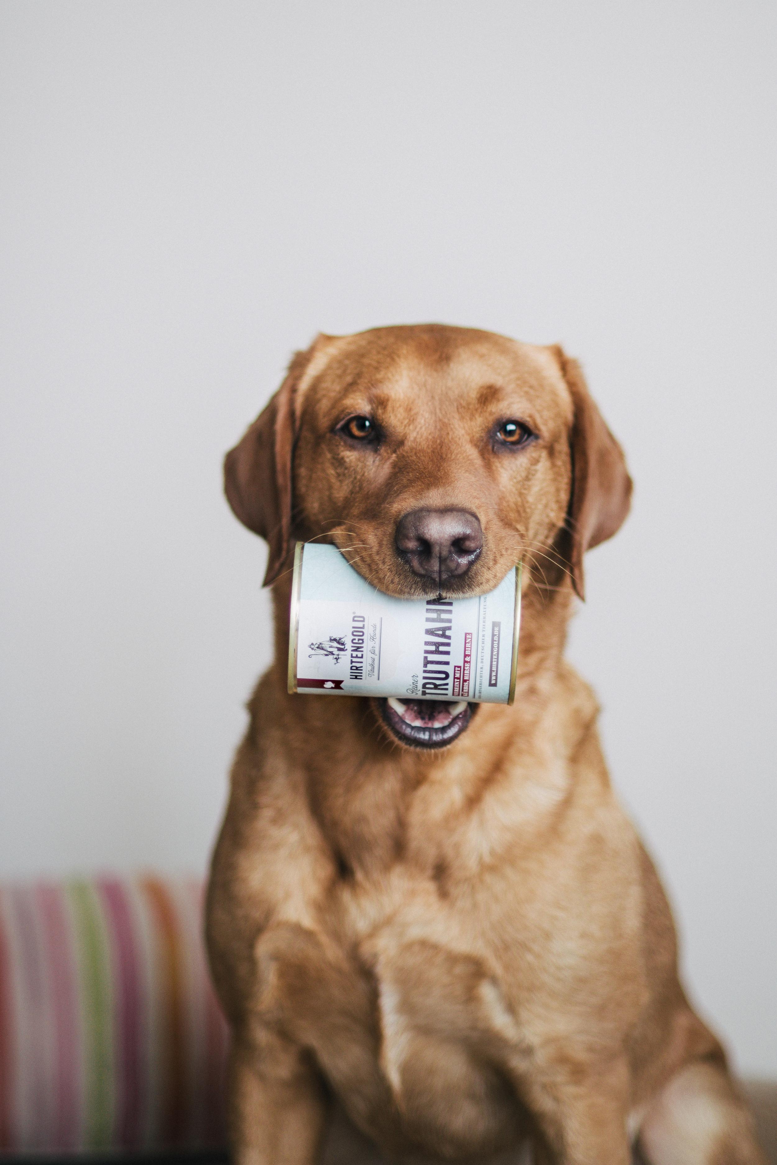 Machst Du mir bitte diese Dose mal auf?