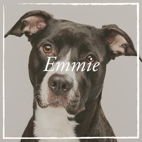 Emmie.png