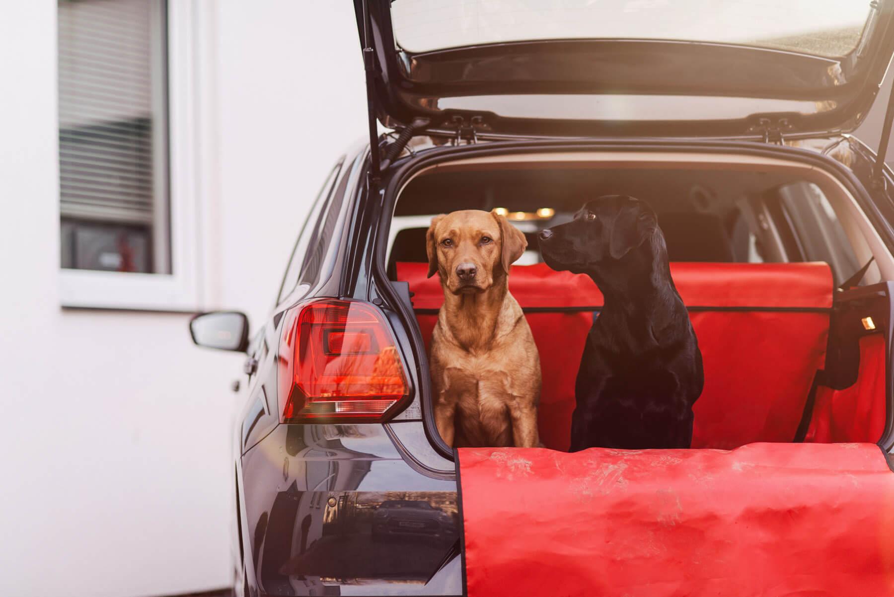Kofferraumschutz von the Hatchbag Company