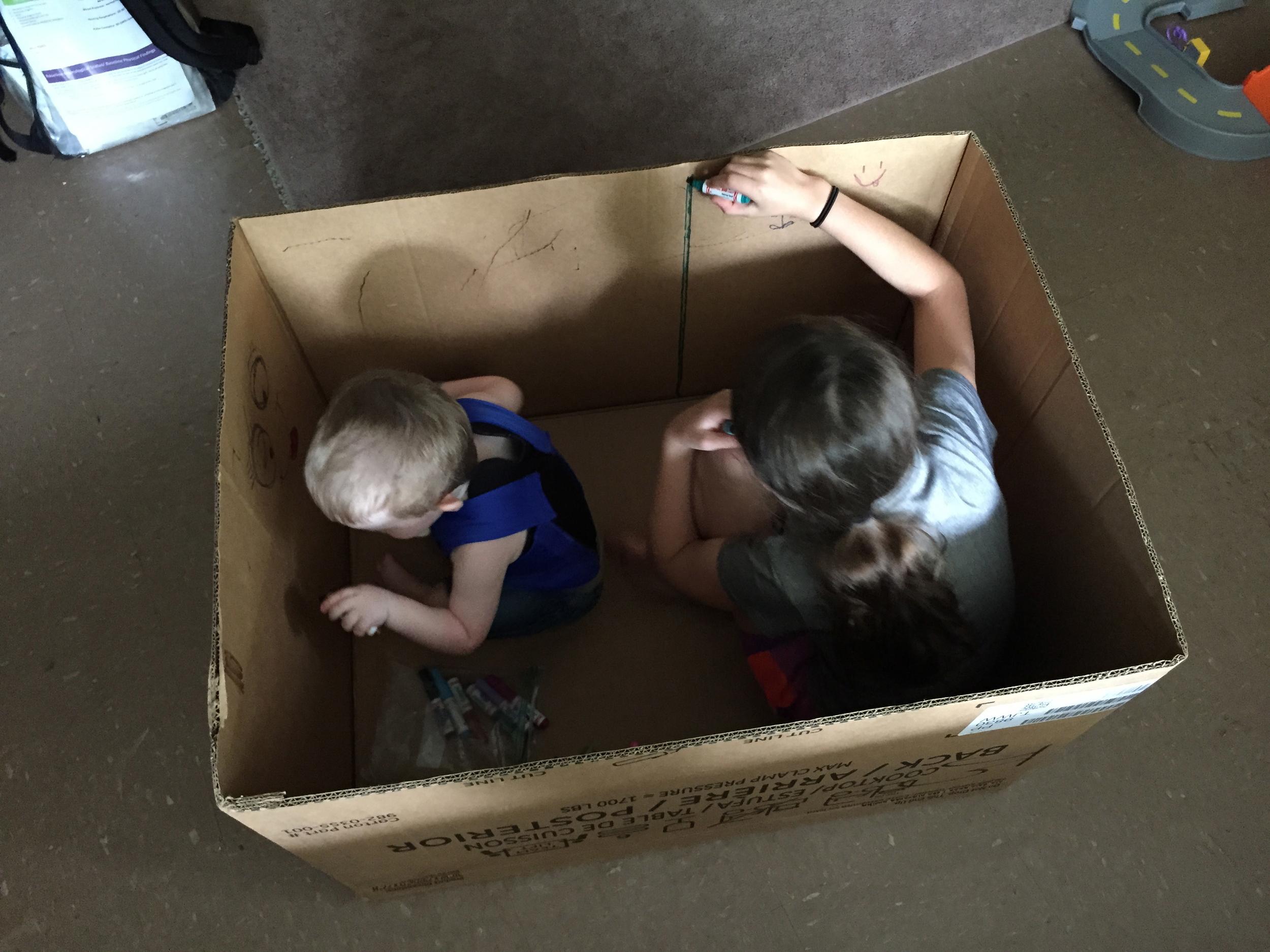 Cardboard box. Can't get more fun!