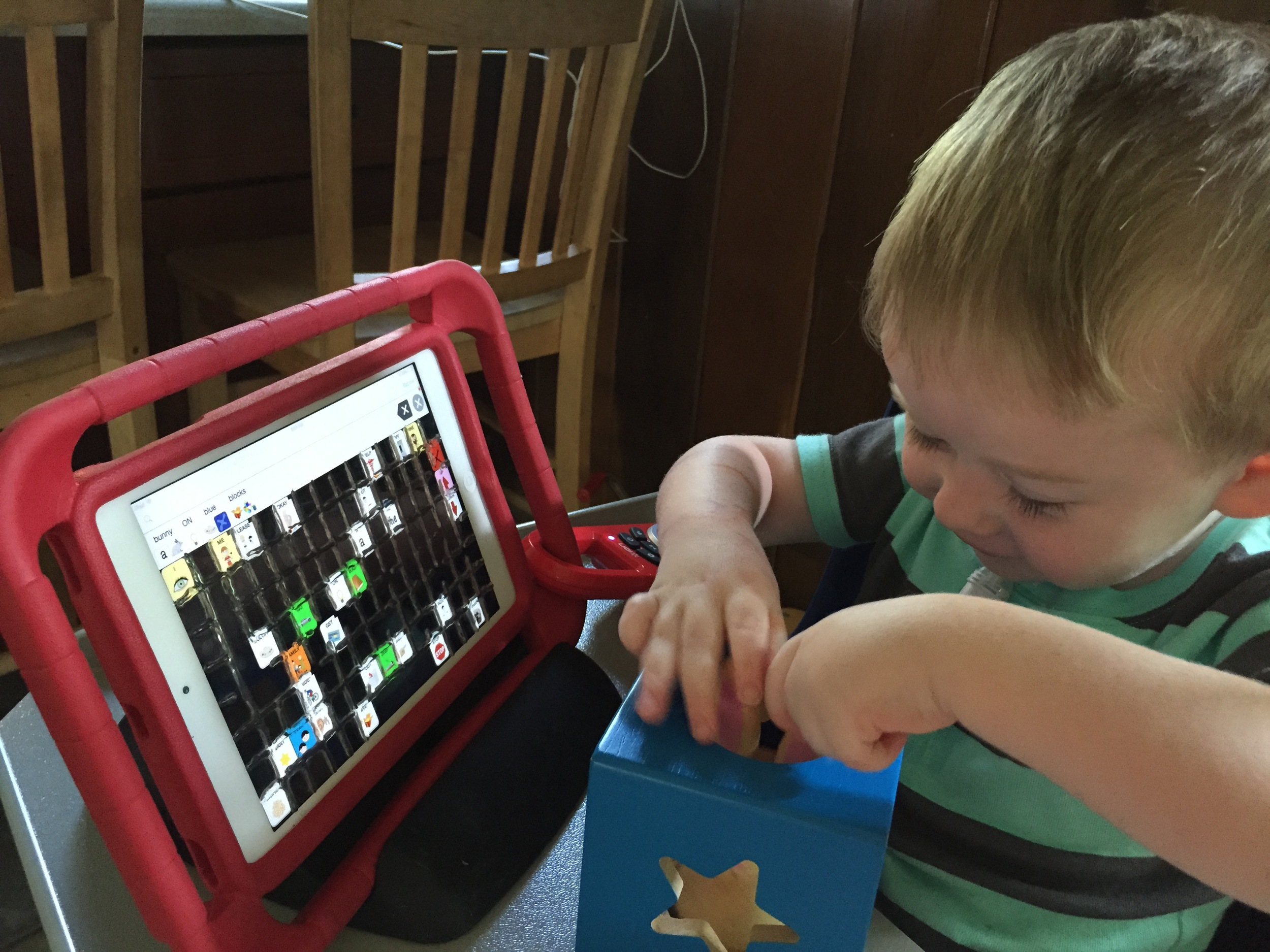 Working on prepositions ON, OFF, IN and OUT using Nathaniel's talker and the toy  Bunny Peek-a-Boo