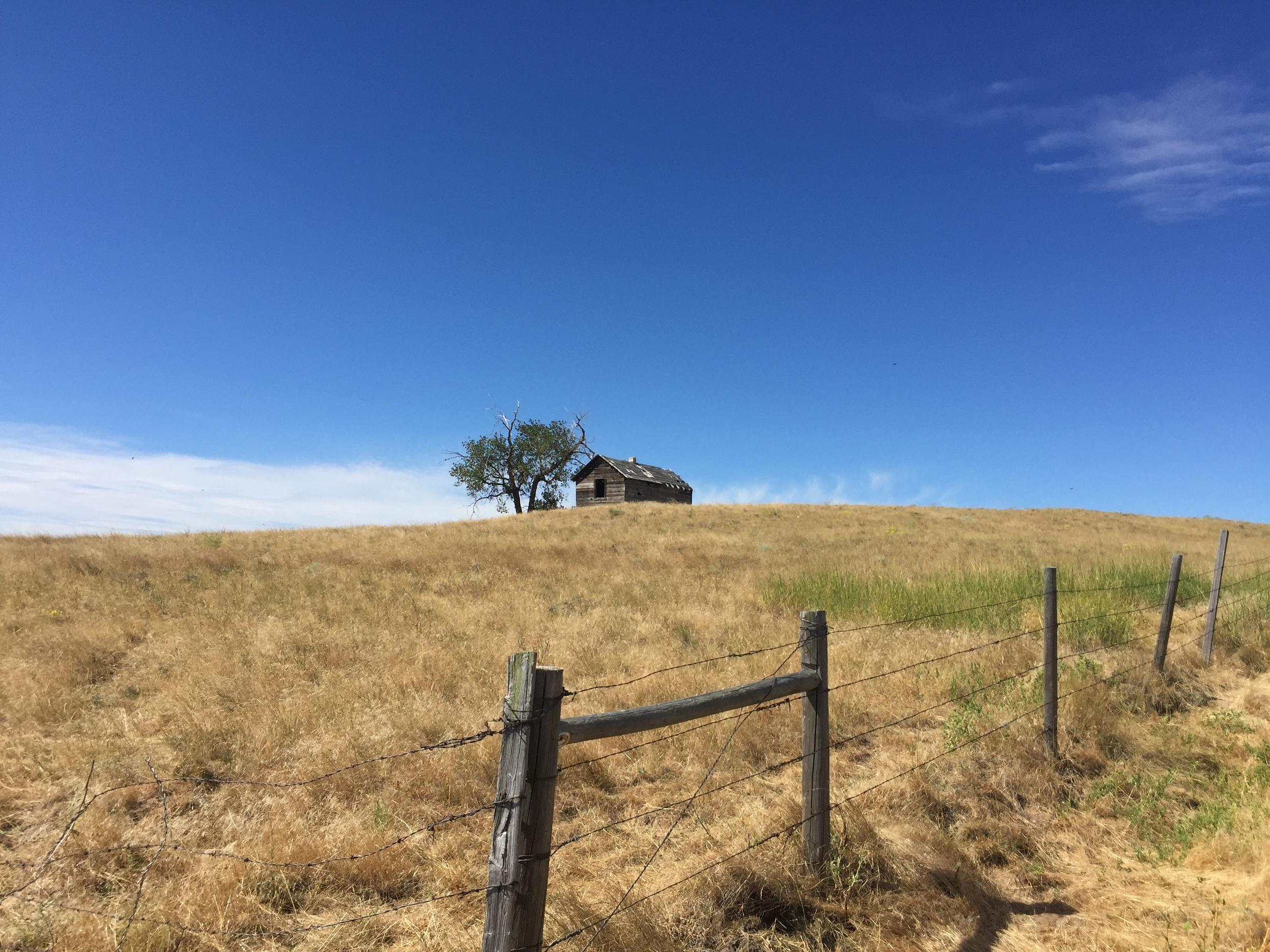 An original homested