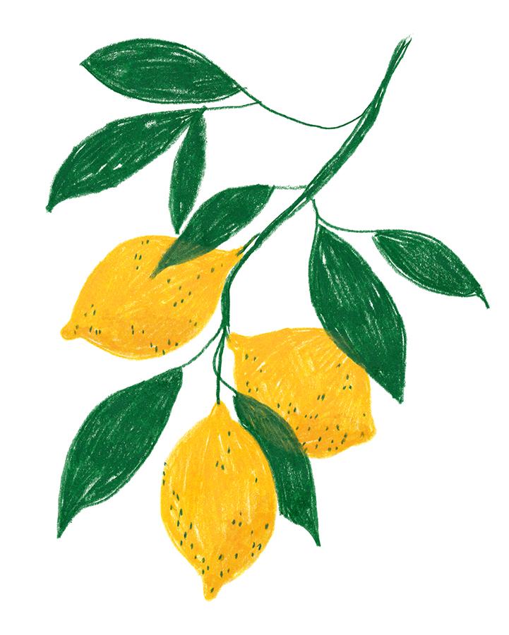 Lemons_1.jpg