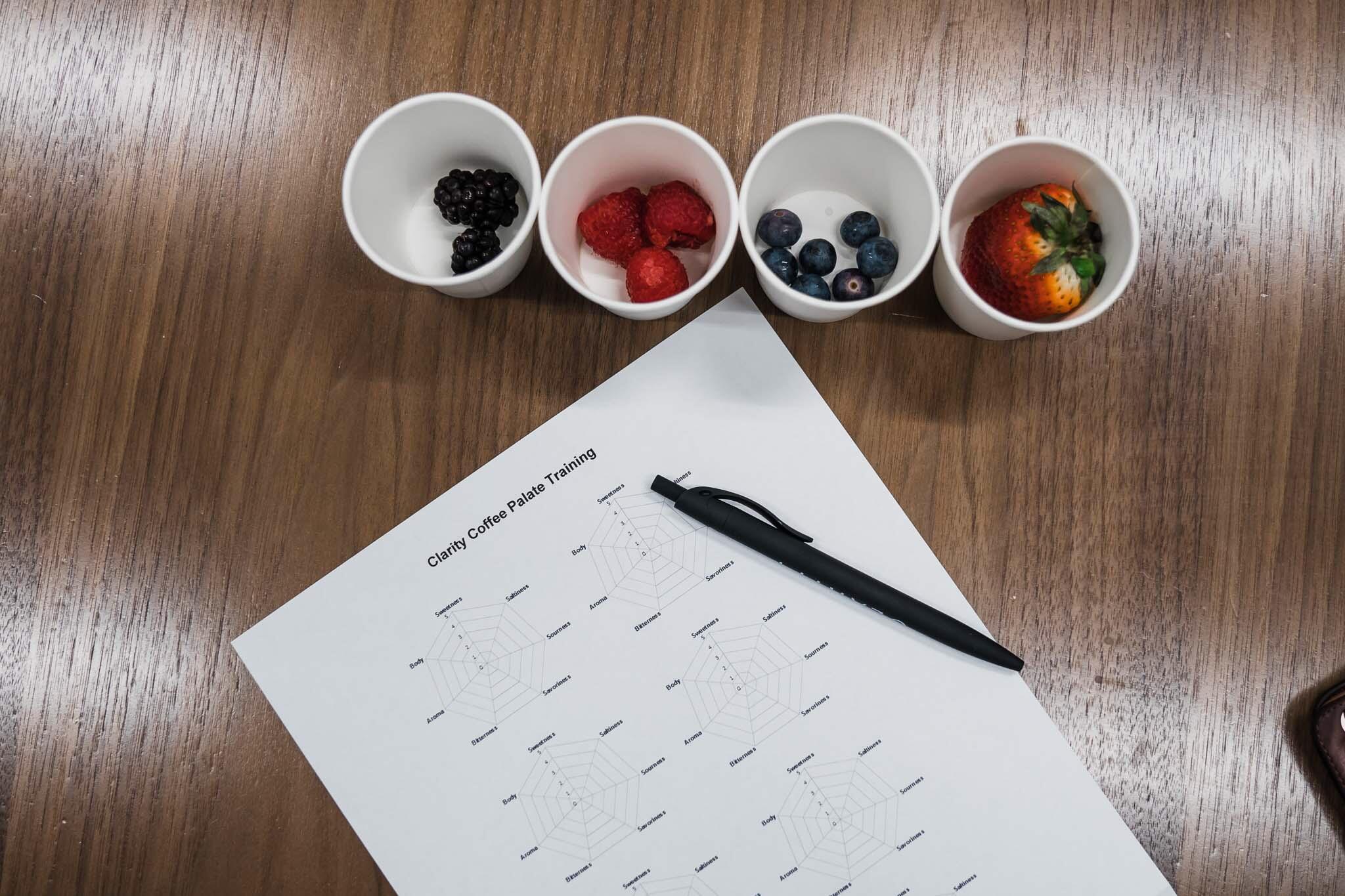 berries-palate-training