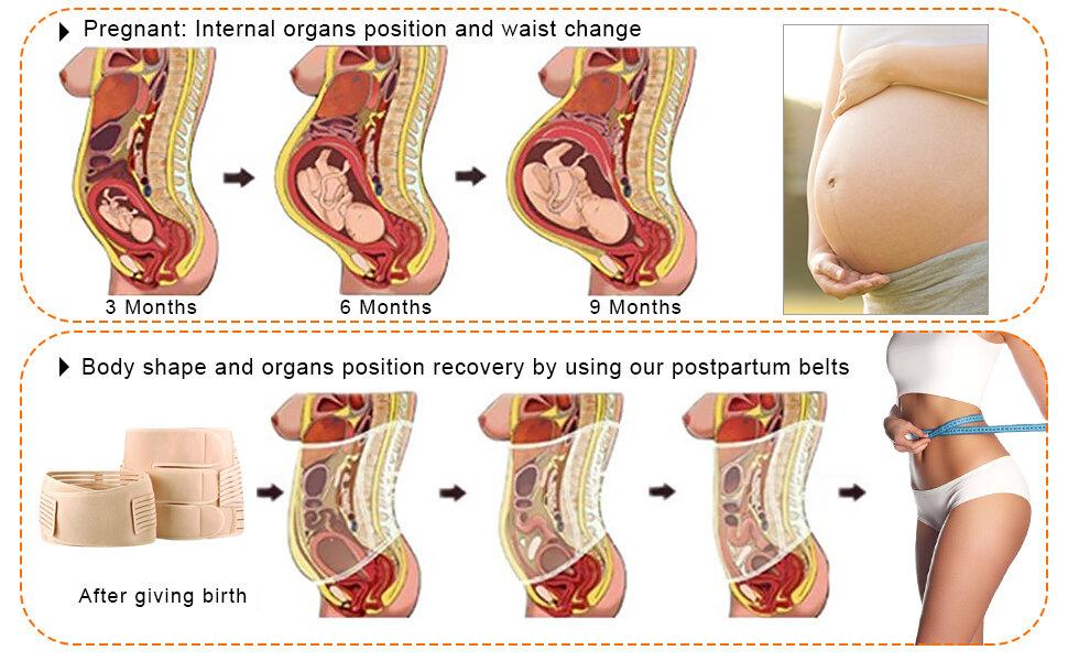 Belly Wraps: Post-Pregnancy Hit or Hype? — nannypod
