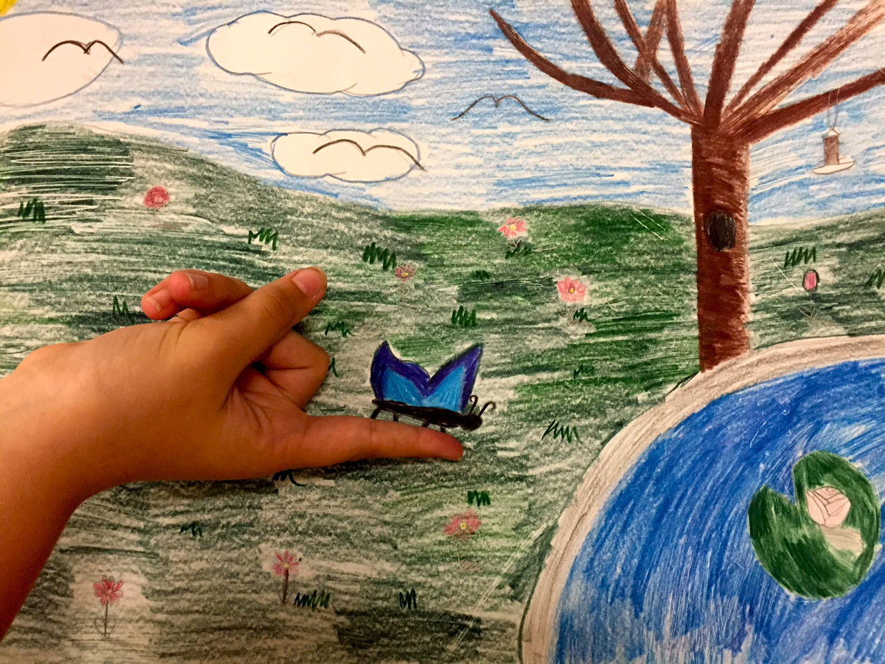 Butterfly Landing