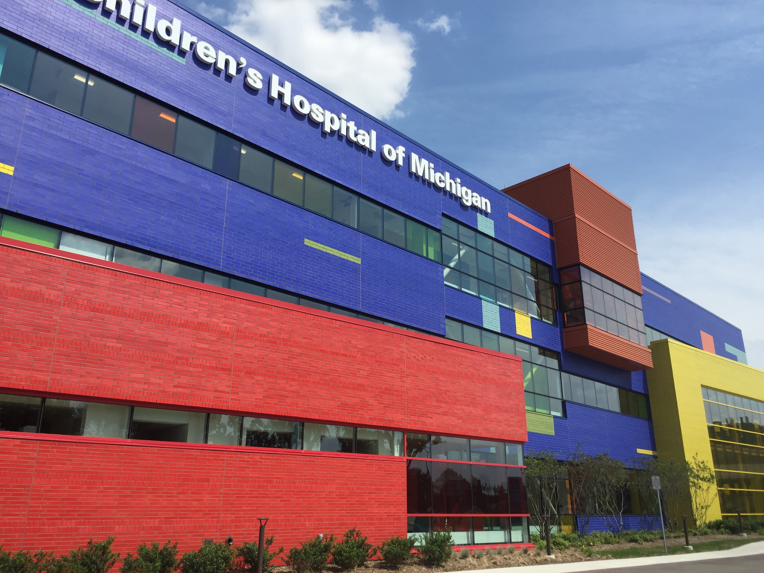 Children's Hospital of Troy