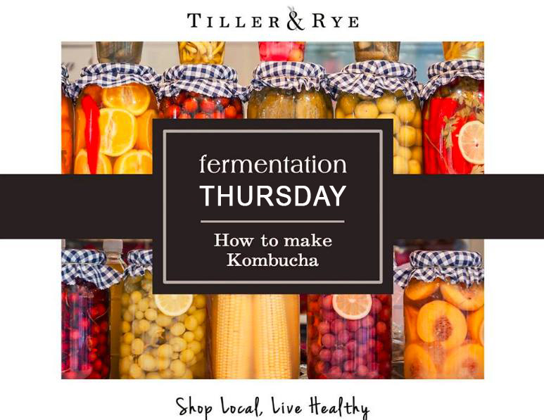 fermentationthursday.jpg