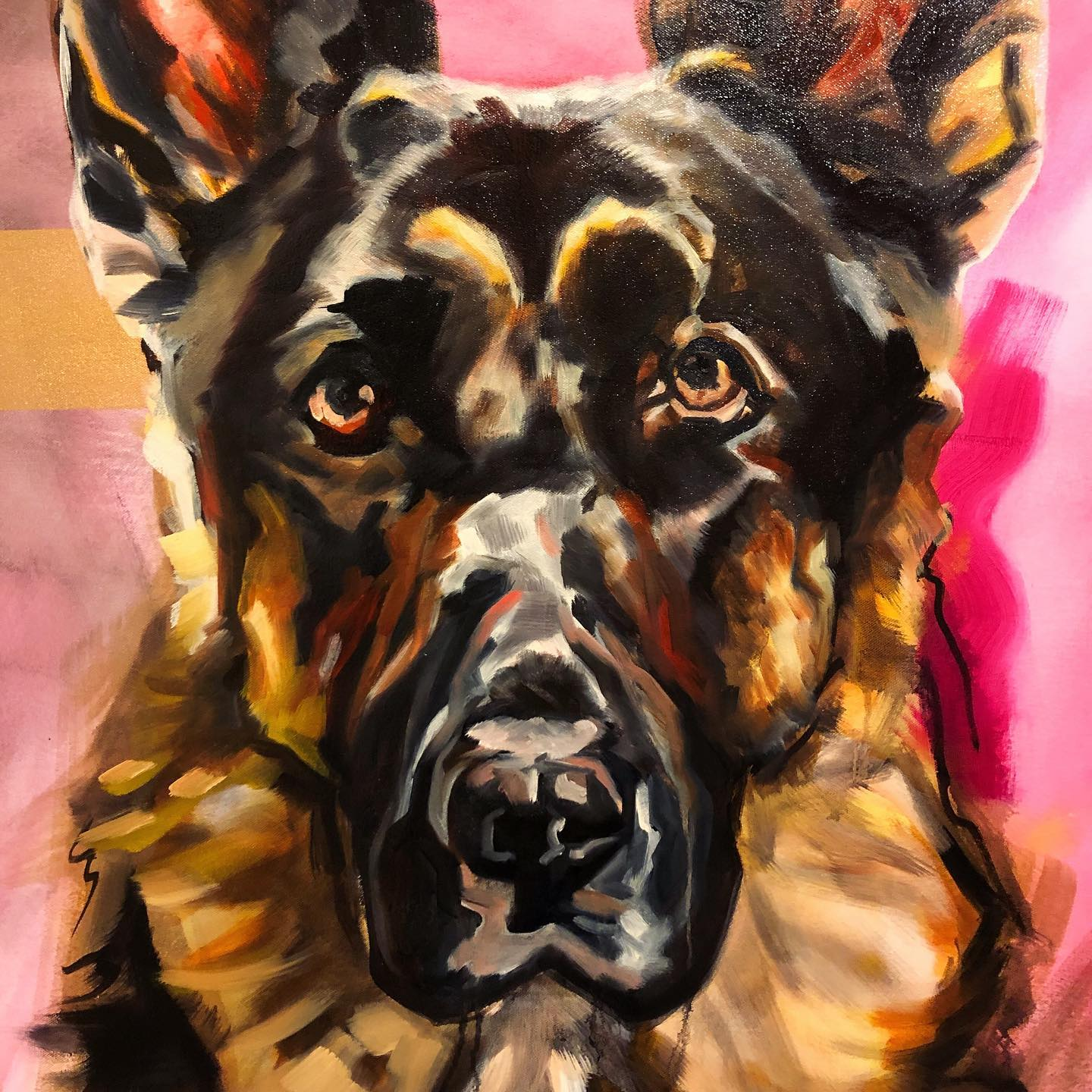Dog Portraits - Accepting commissions of all shapes and sizes. Get in touch via the contact page to get your custom piece!