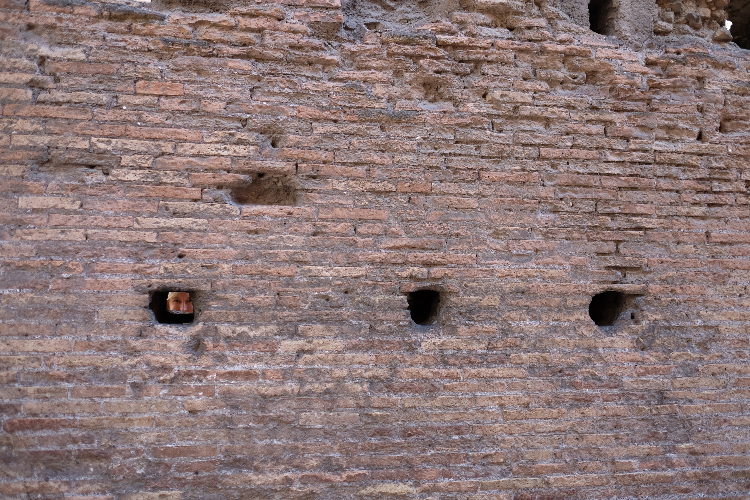 Can you find Alli in the Colosseum wall?