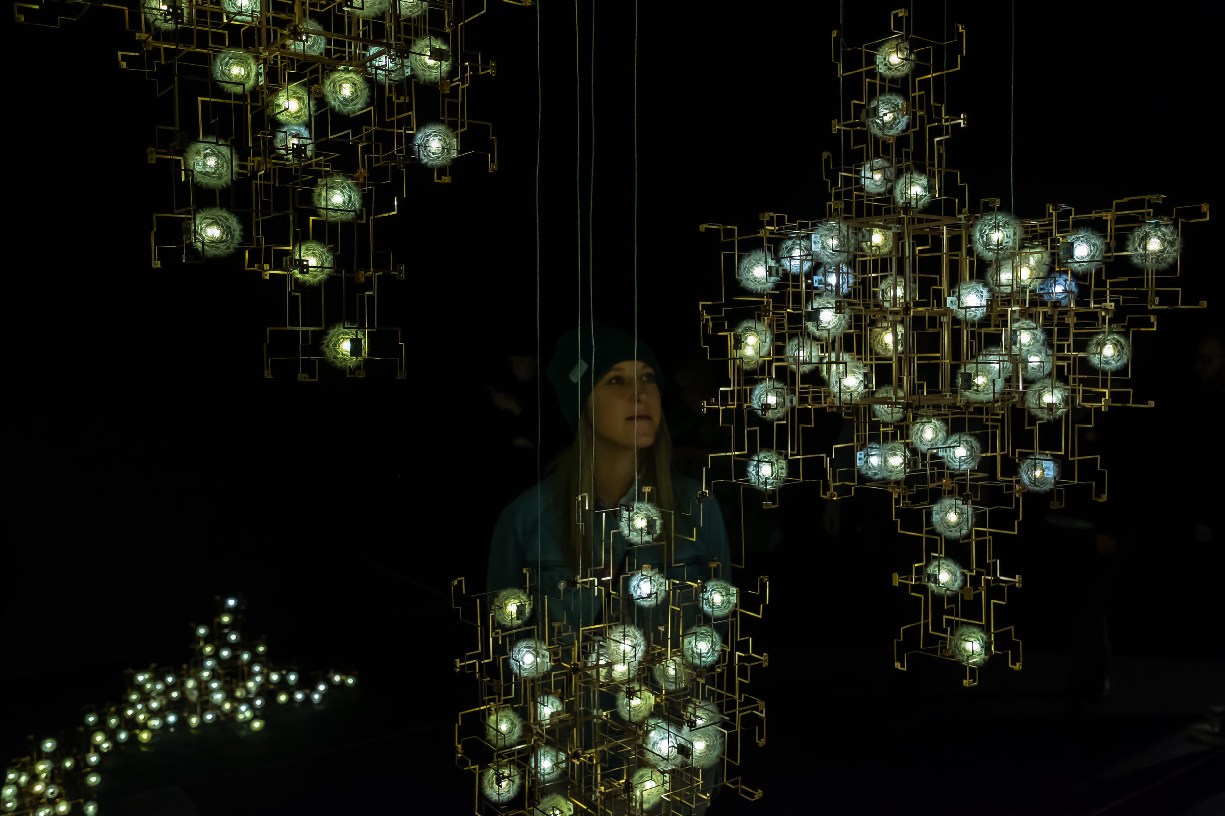 One of our favorite exhibits! These light bulbs represent dandelions. So pretty!