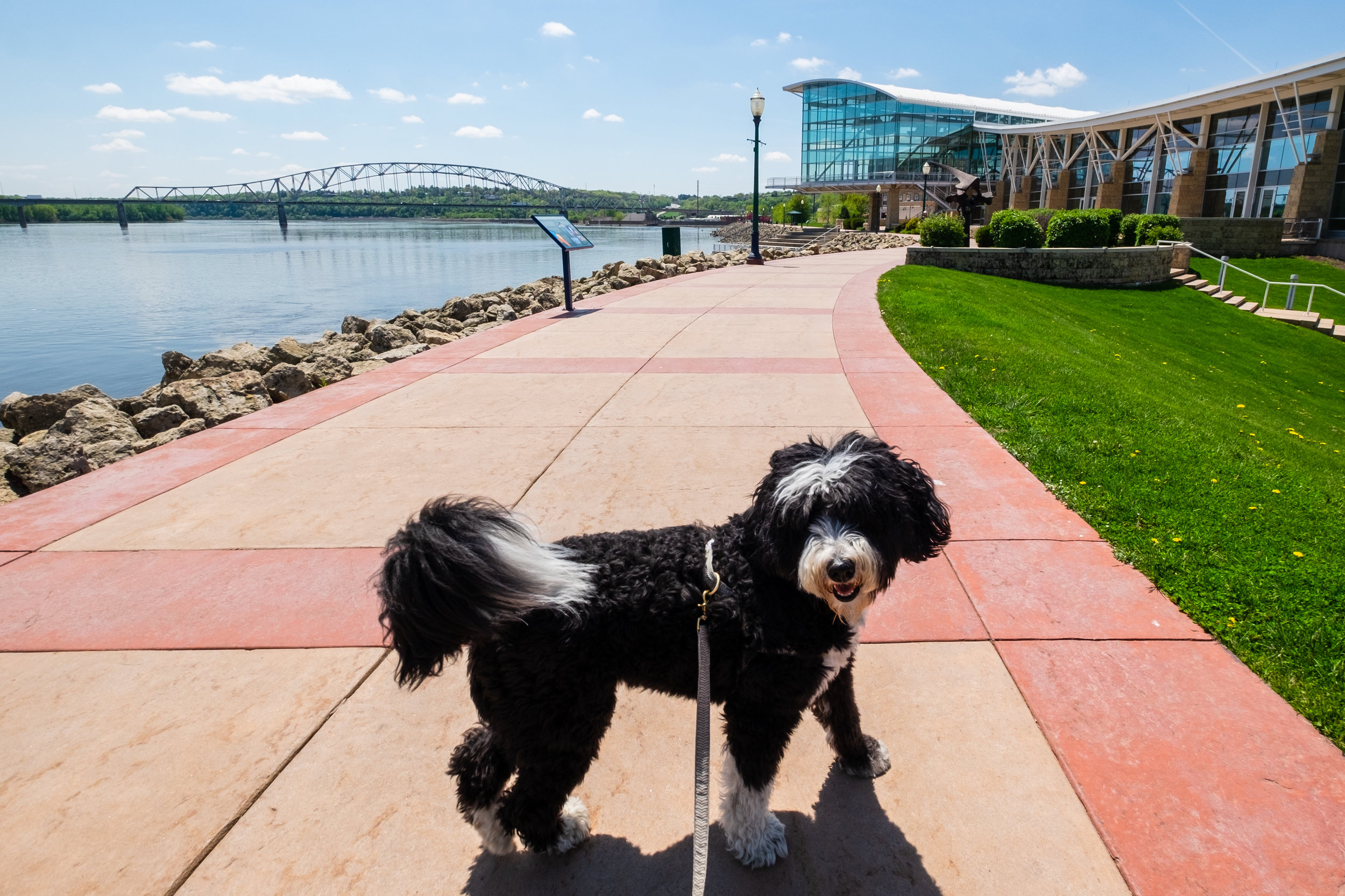 Sally LOVED the Mississippi River Walk