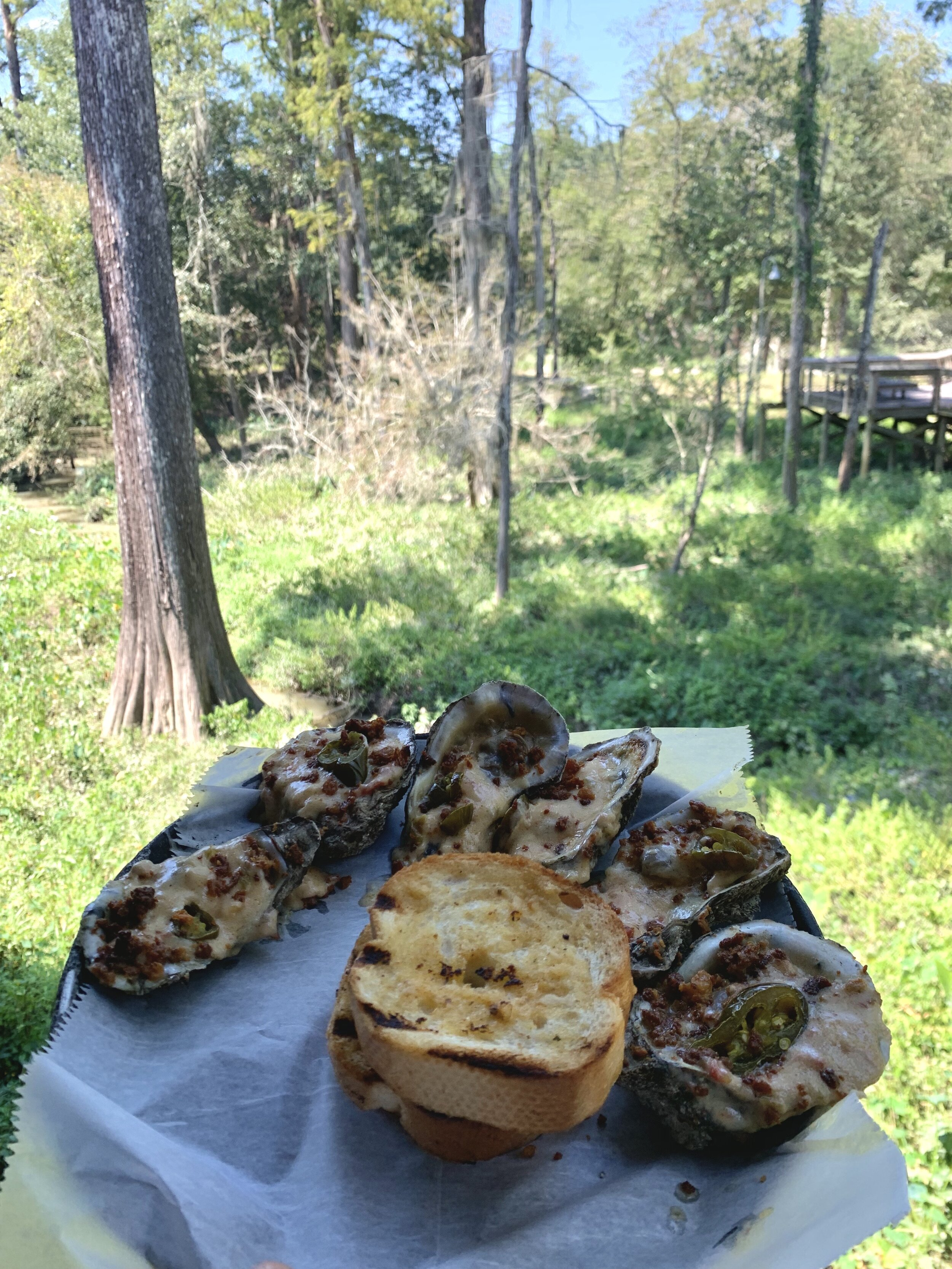 Chargrilled Oysters… the culinary highlight of Bobby's trip