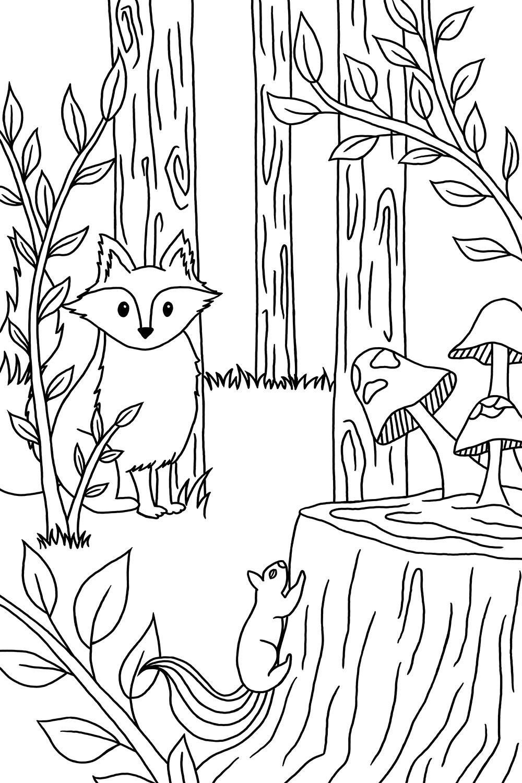 4_tree-stump.jpg