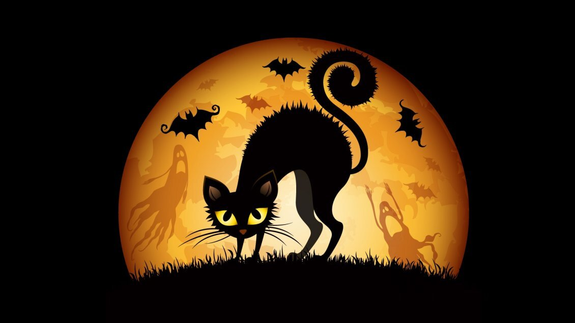 11263_Black-scary-cat-in-the-night-of-Halloween.jpg