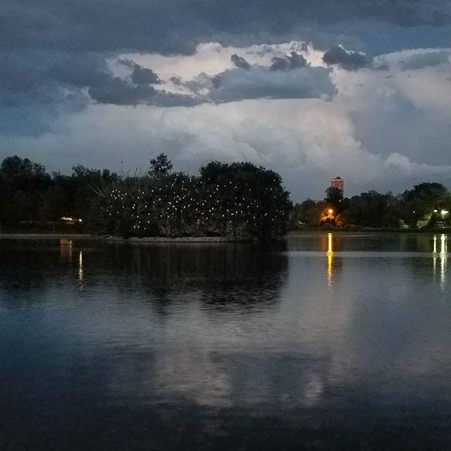 just a shitty grainy dusk cellphone shot in #washingtonpark . . . . . . #daftcity #washpark #denver #colorado #colorfulcolorado #themilehighcity #visitdenver #igersdenver #streetphotography #storyofthestreet #dreaminstreets #lensculture_streets #intercollective #somewheremagazine #phroommagazine #lensbible #urbanlandscape  #weirdlighting #lightningphotography #denversky #cloudporn #awesomeearth #naturephotography #landscapephotography  #birdsonbirds #thebirds #roosting #reflections #architecturephotography