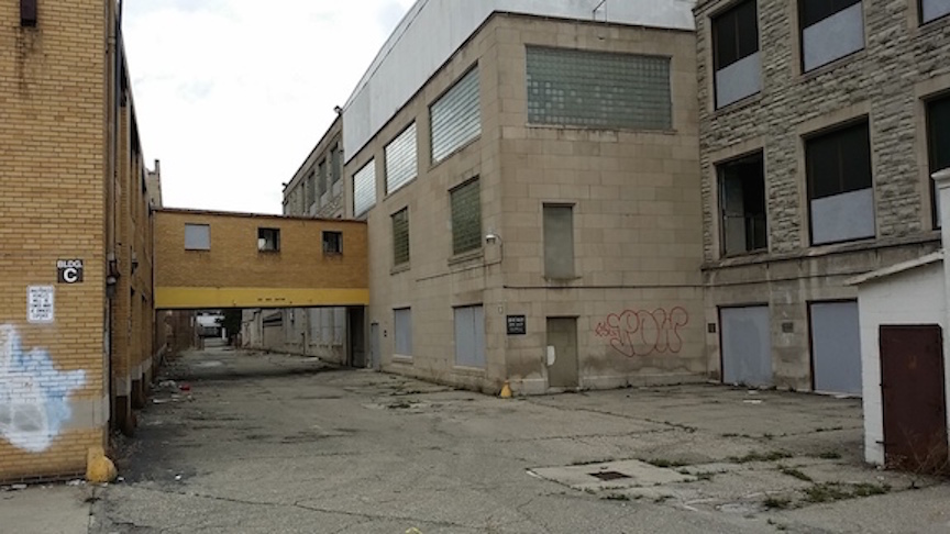 109 Glendale Street rear area copy.jpg