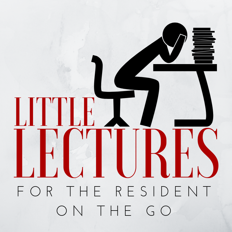 Little Lectures Logo.png