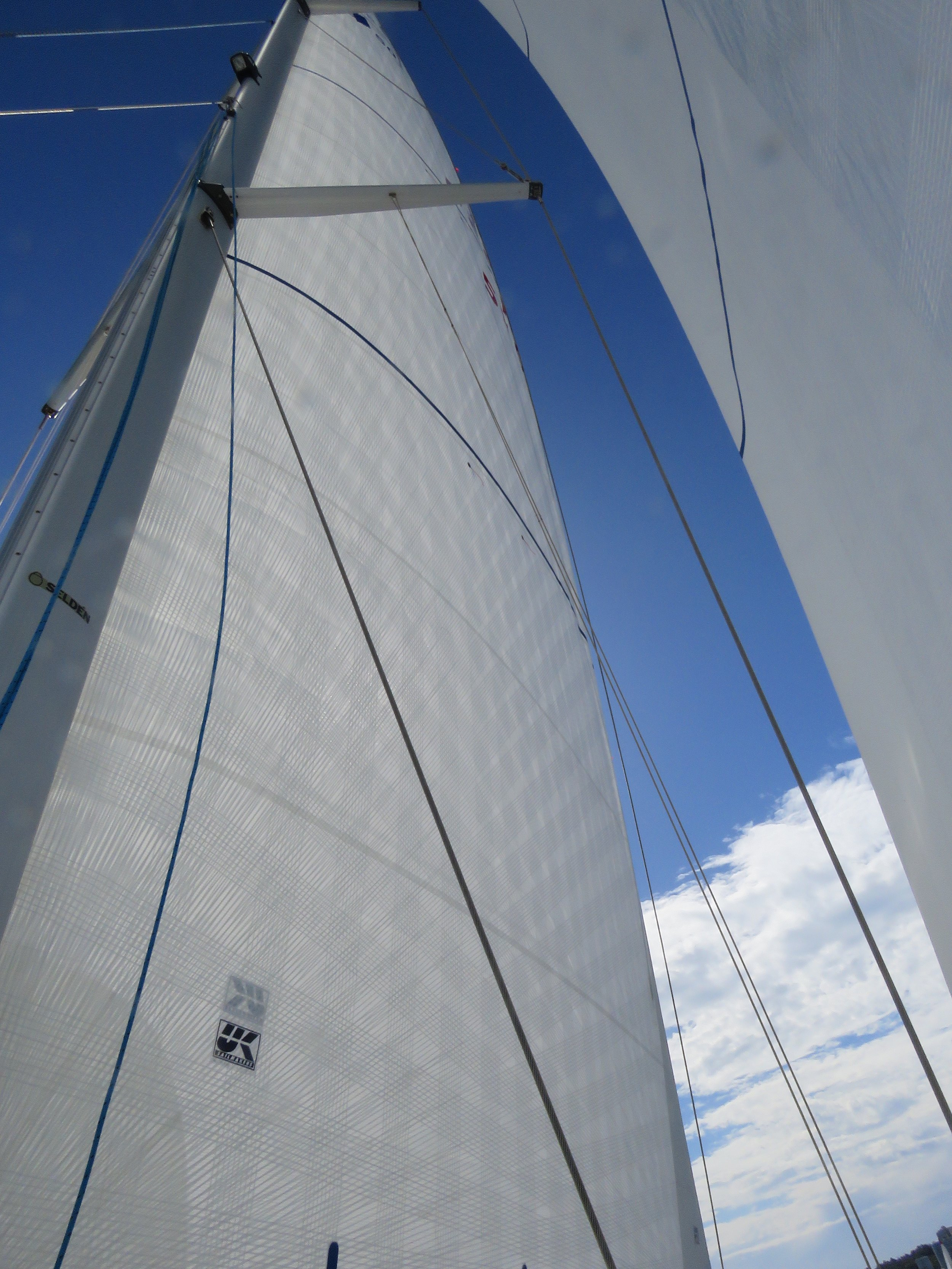 An example of the greater coverage of tapes on an X-Drive Endure sail.