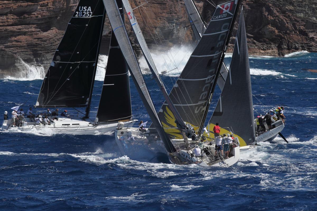 Pogo 12.5 Hermes Ocean Racers.jpg