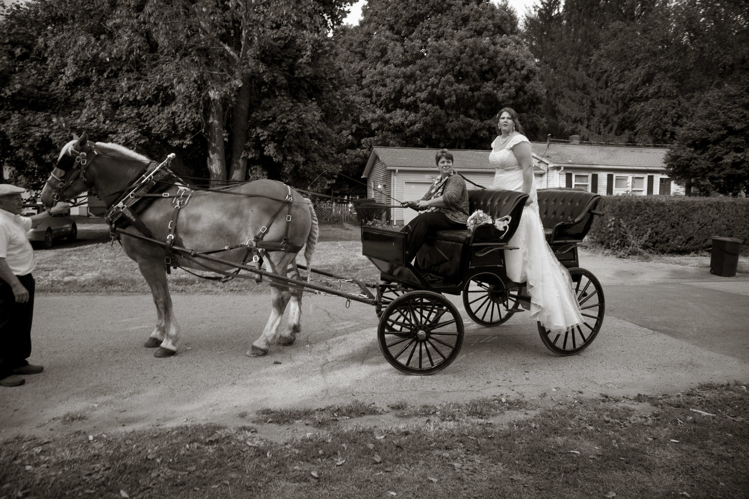 bride horse drawn carriage