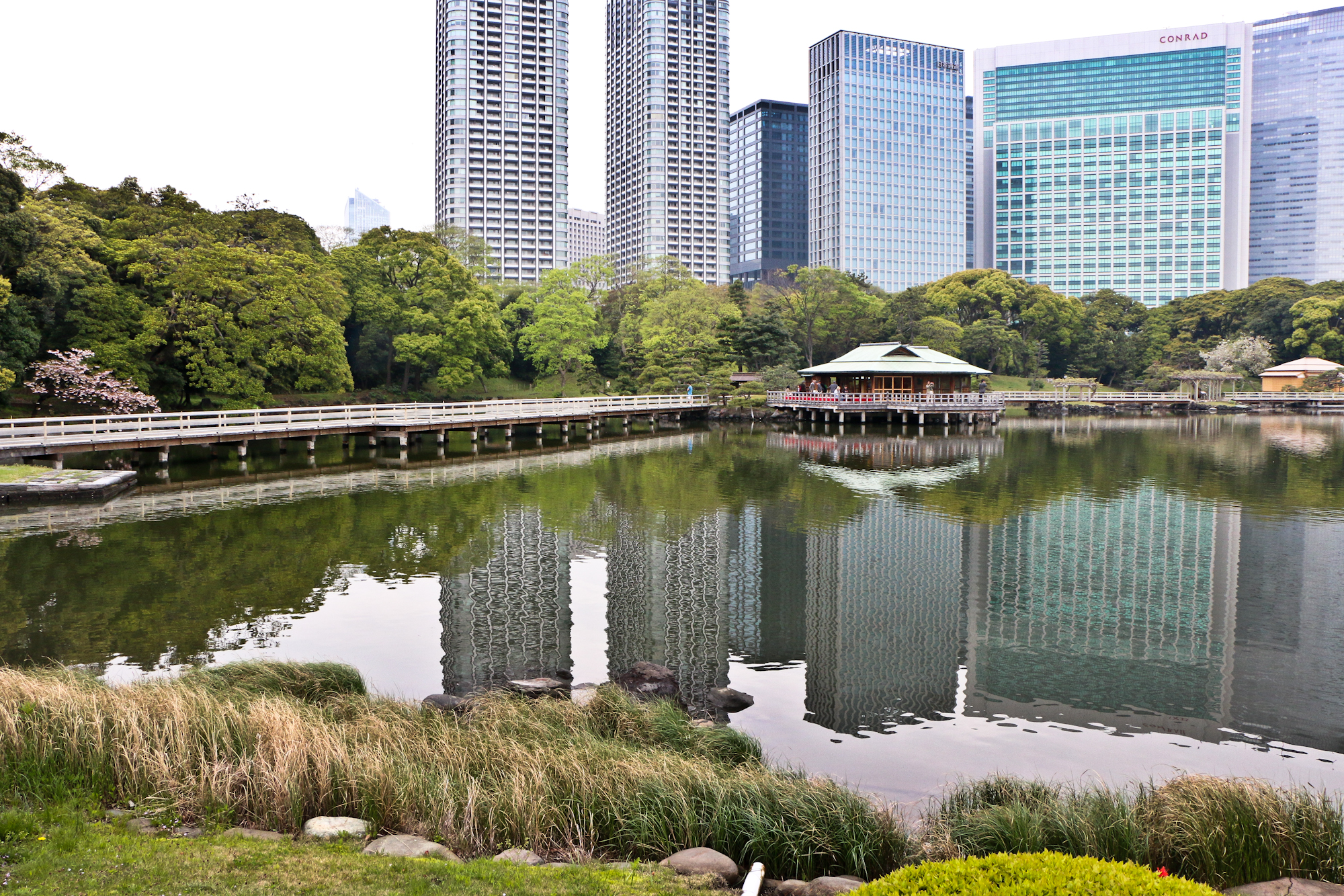 Tokyo Scene .  Hama-rikyu Gardens, a former preserve of the Tokugawa Shoguns, backed by the high-rises of Shimbashi.