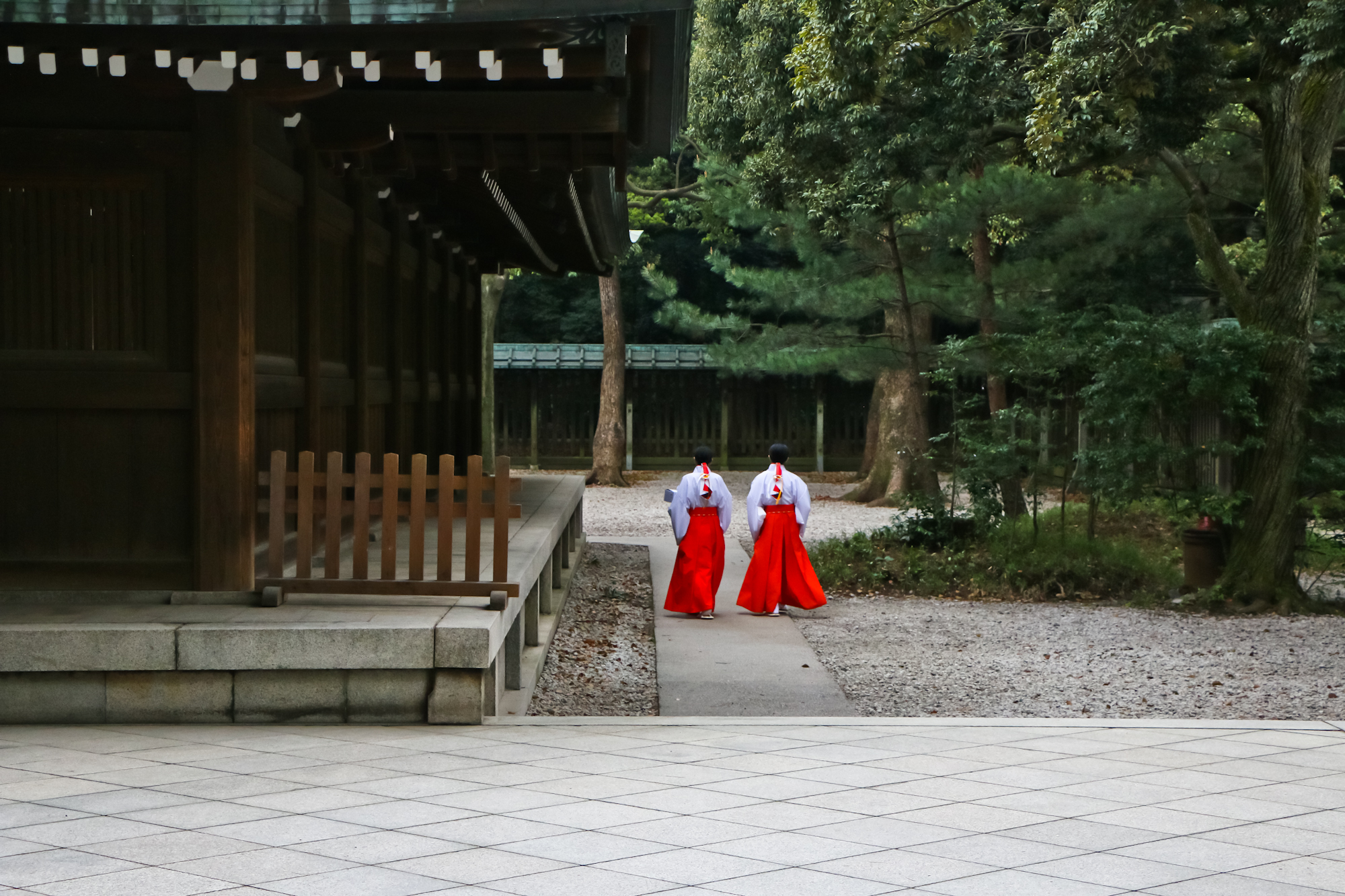 Shrine Maidens, Meiji Jingu, Tokyo