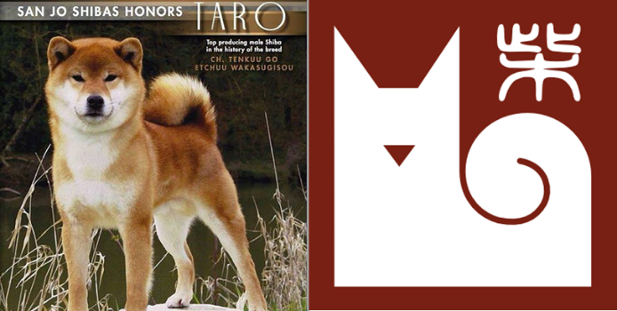 What a Stud!  Taro, father of Toro and grandfather of Momo. Great logo inspiration.