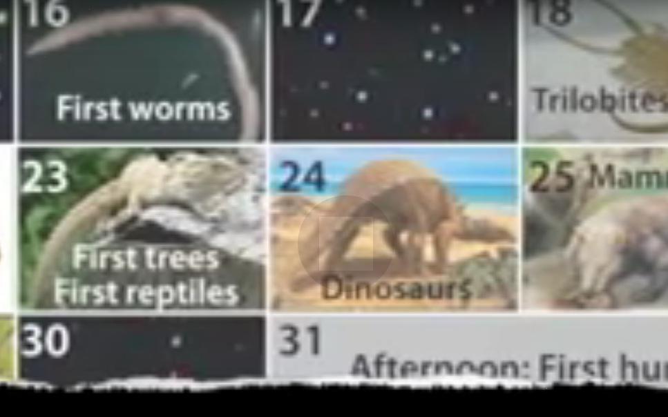 The Cosmic Calendar - 3:20