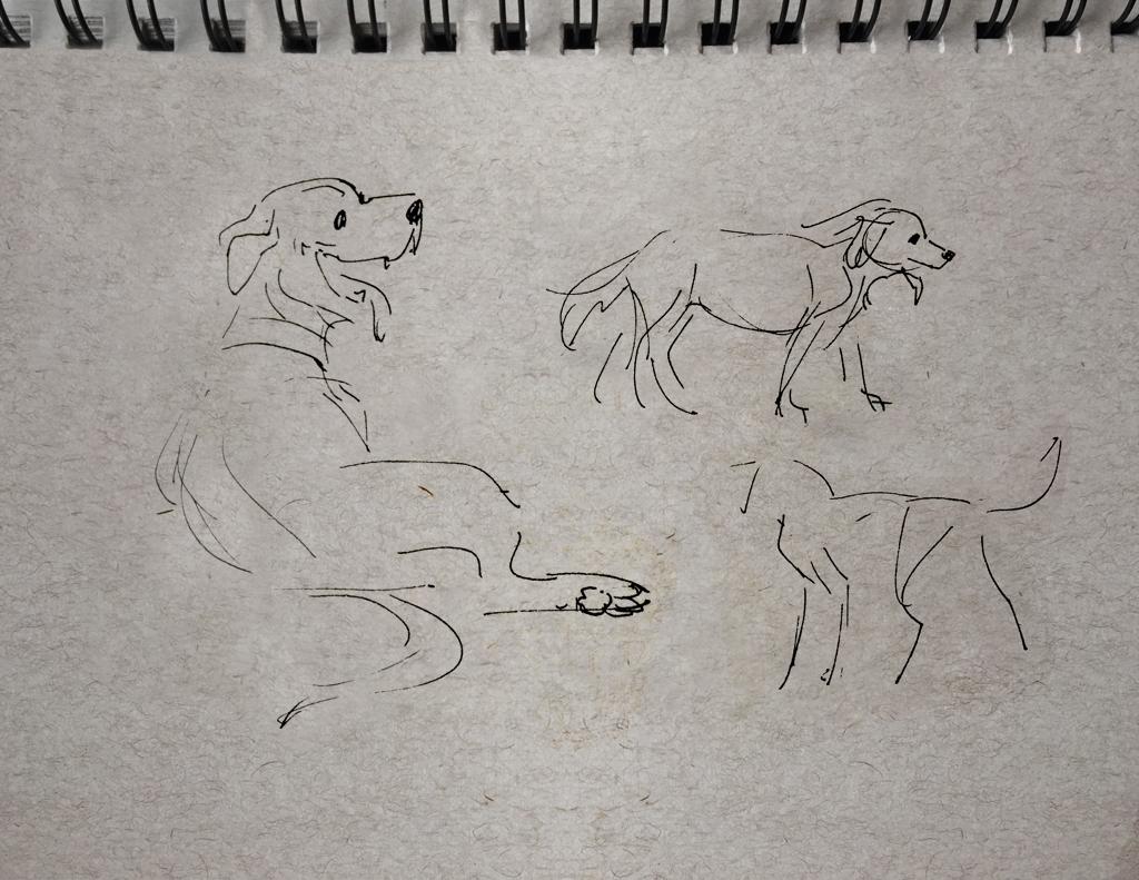 sketch01.jpg