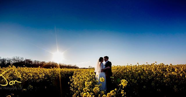 Blue sky in a Yellow rape field in the low spring light - the perfect combination at Gillian and Tom's big day. @jon_newton_photography #weddingphotography #theredbarnnorfolk #norfolkwedding #travelingweddingphotographer #creativeweddingphotography  #derbyshireweddingphotography #nottinghamshireweddings #nottinghamweddingphotographer #naturalweddingphotography #weddinglandscape