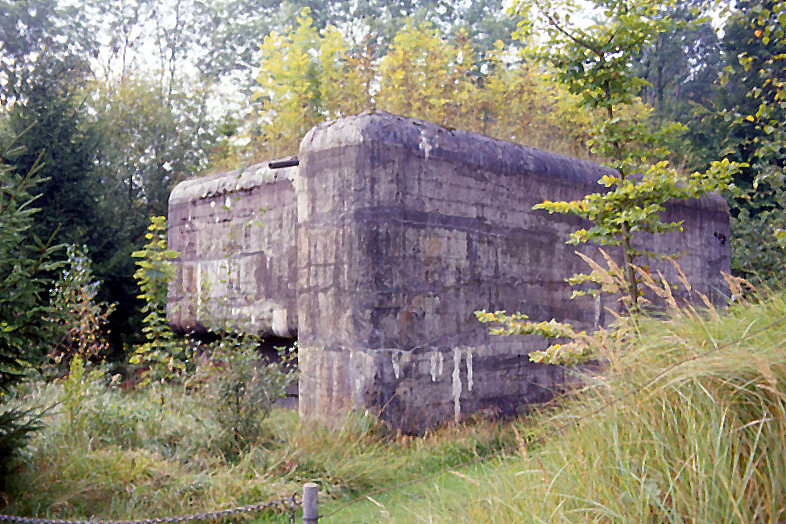 Bunker um Kreuzlingen, Bottighofen