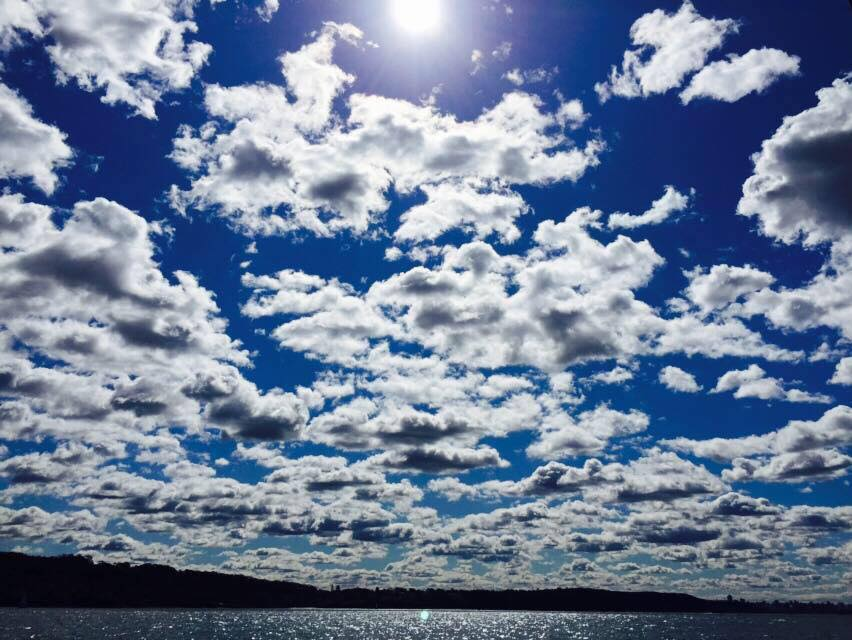 Picture by Furo Allison: Iron Cove Bay in Sydney's Inner West