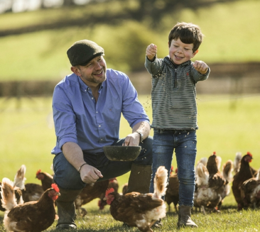 Dan and Farmer Dudley seed chickens eggs free range Taste of the West